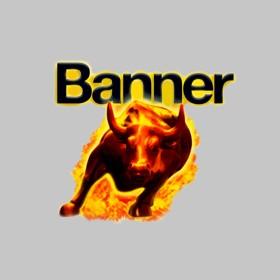 Banner Autó Akkutöltők
